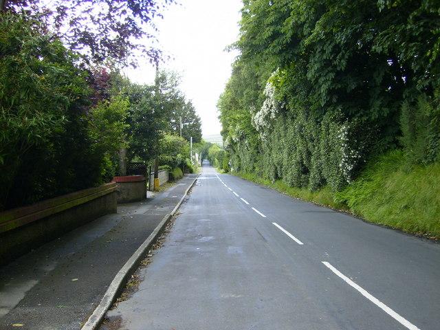 The A22 road north of Ballanard