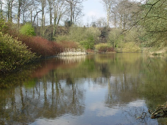 Quarry bank Millpond