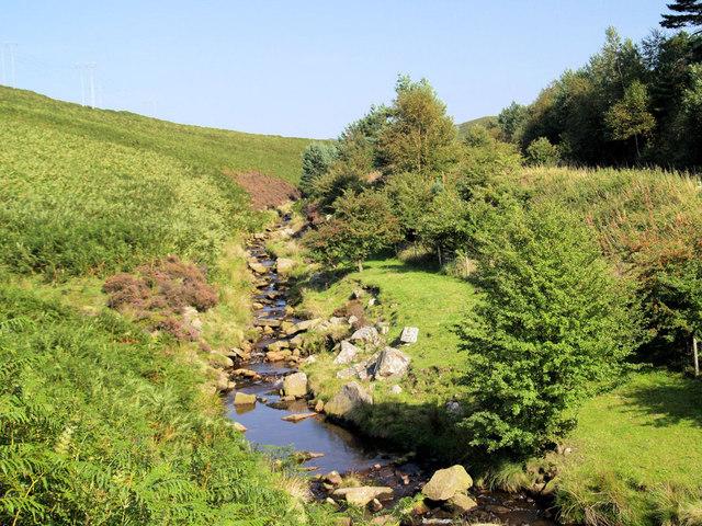 Stream into Cutthroat Bridge