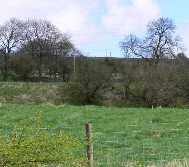 Upland Field Scene With Dry Stone walls