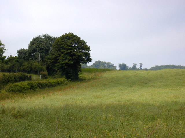 View from footpath from Hognore Farm to Wrotham Water Road