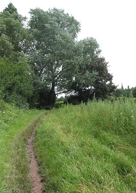 Footpath by the Wye