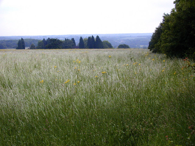 Looking towards West Park Farm