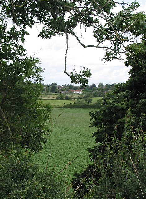 View to Wilton from footpath