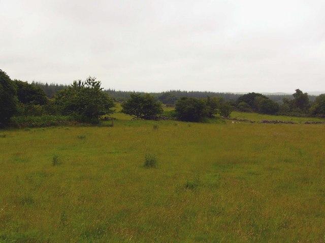Farmland, Torhousemuir