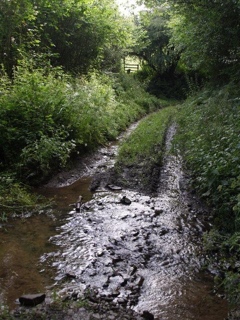 Tomsclose Lane