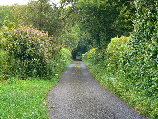 Featherbed Lane, Clutton