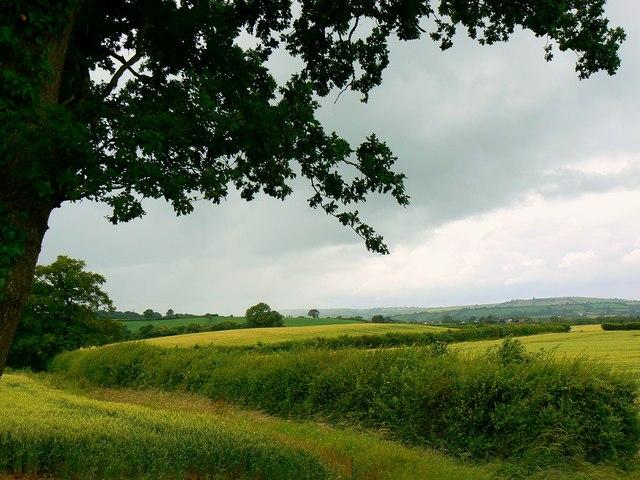 Open countryside near Chelwood
