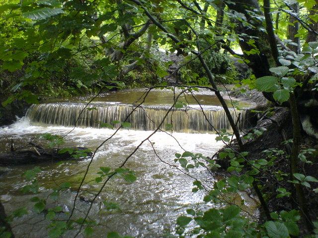 Weir in Borsdane Woods