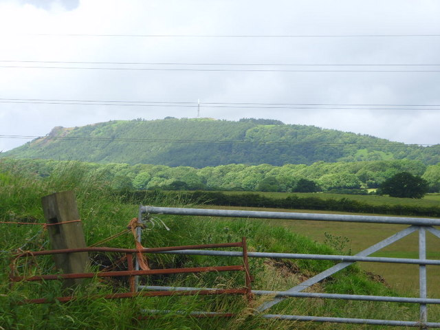 Black Hayes in the foothills of the Wrekin