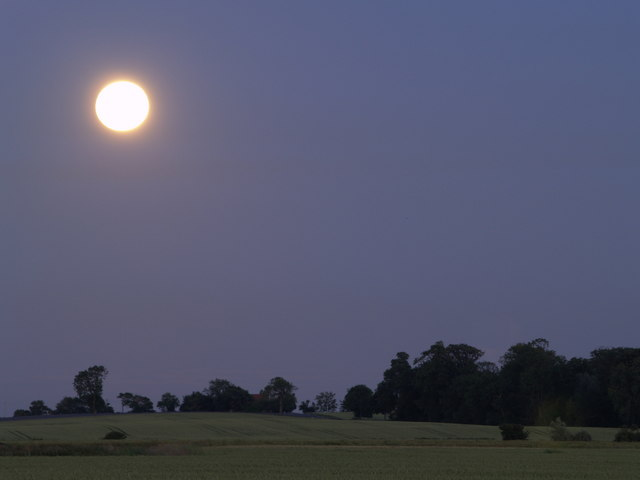 Moonlit Landscape near Dark Lane