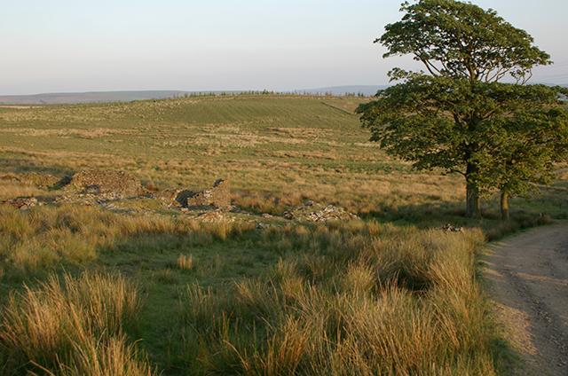 Ruins on the moor