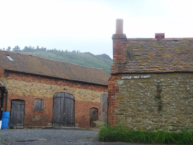 Little Hill Farm