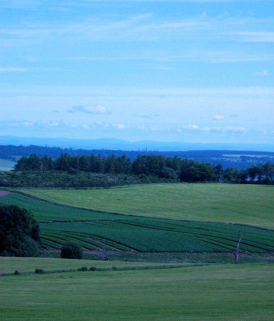Farmland near Dunning