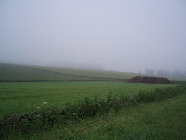 Muck heap in the mist!