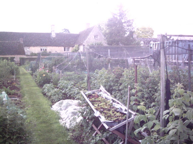 Kencot allotments