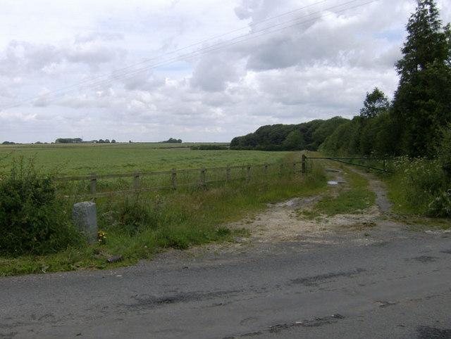 Lane at War Memorial site