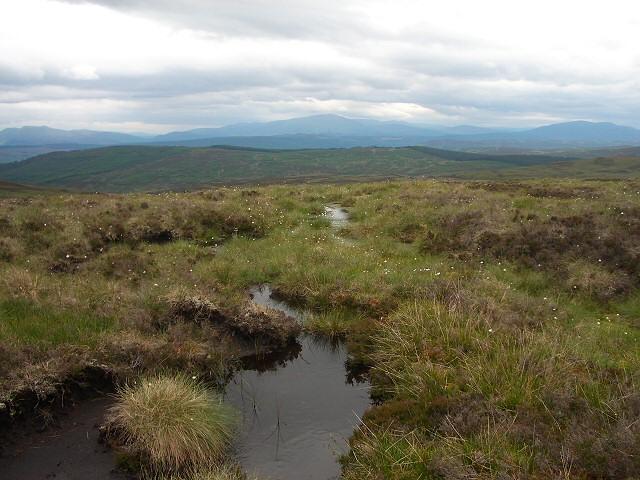 Ridge top bog