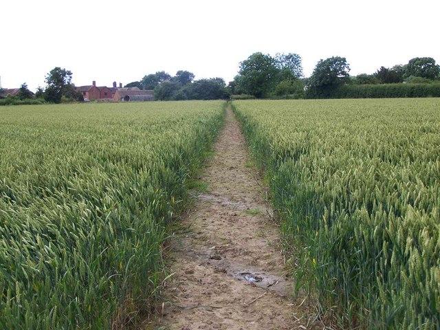 Footpath To Hughley