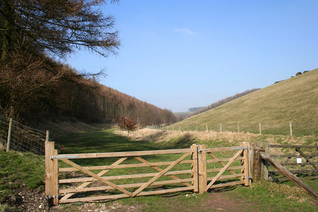 View up Tun Dale towards Great Plantation