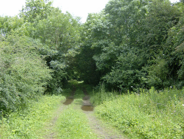 Track of former Great Northern main line at Orby