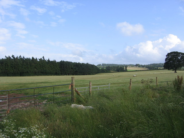 Allens Brake and Wick Farm