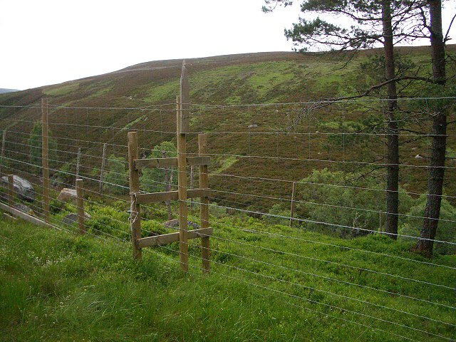 Stile across deer fence
