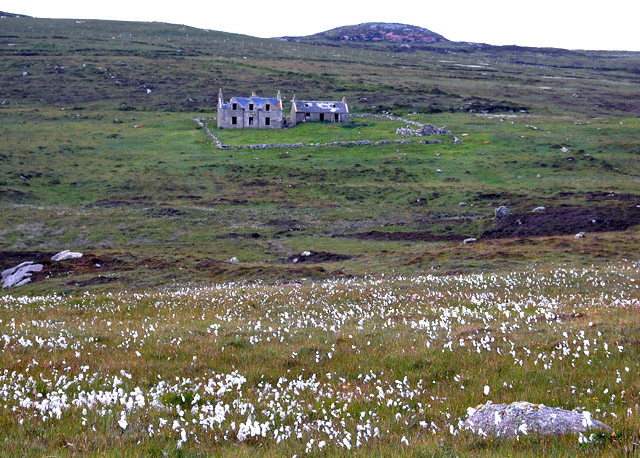 Cottongrass and derelict houses in North Uist