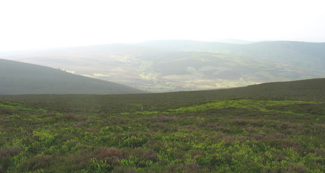 View from the summit of Moel Fferna towards the NE slope of Cerrig Coediog
