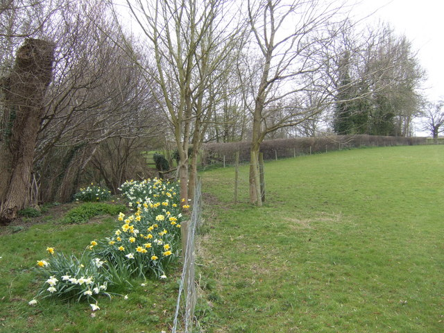 Spring in Little Witcombe