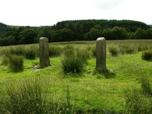 Old Gateposts near Witton Weavers way