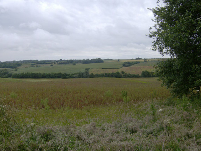 Crop field below Gravel Pit Hill