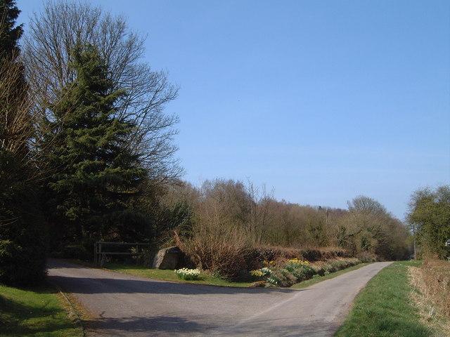 Road at Craig-y-dorth