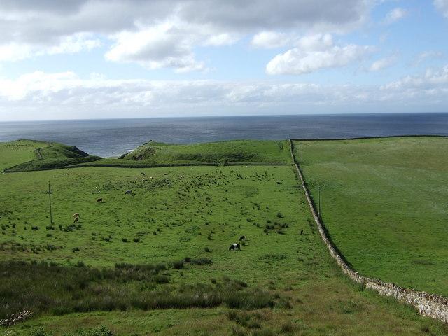 View towards 'Sheepfolds'
