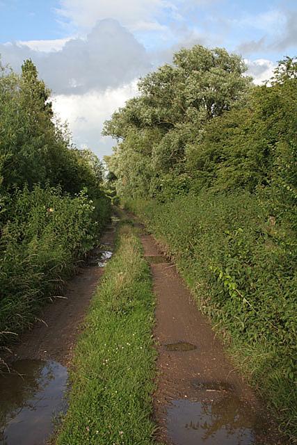 Causeway Lane
