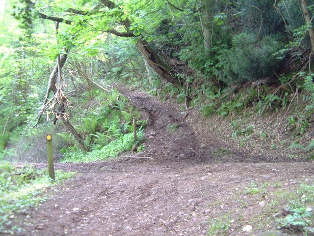 Forest road - footpath junction in Lydart Orles Wood