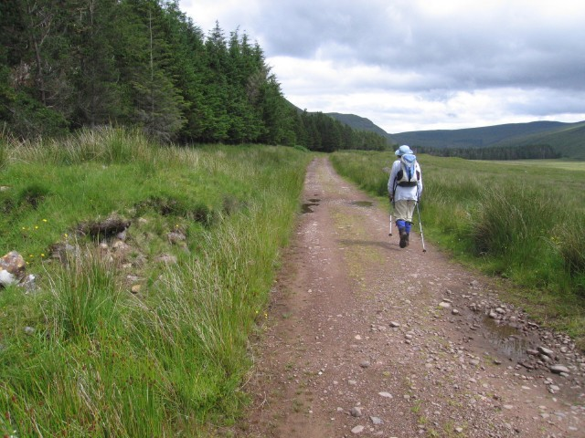 A track across Applecross