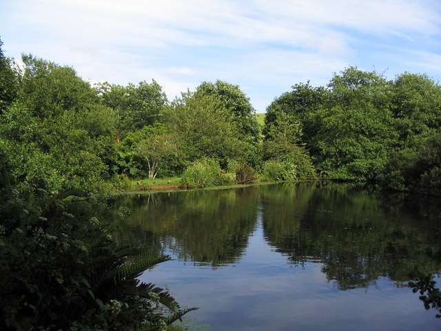 Pond in Open Access area south-east of St Keverne