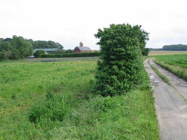 Little Tickenhurst Farm and access track