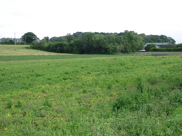 View across farmland near Tickenhurst