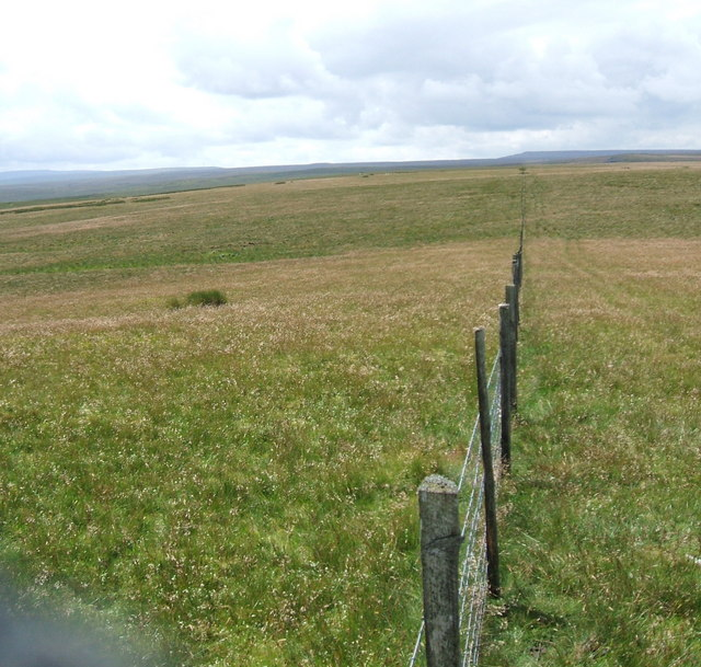 Fence across Caucabush Rigg