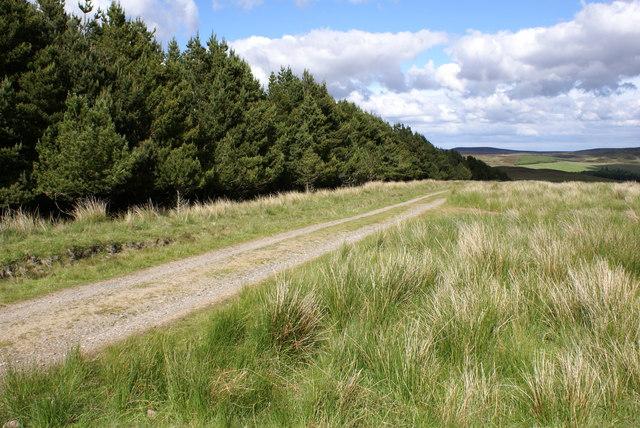 Track near Maiden Pap