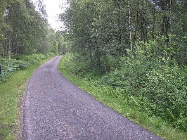 The road to Bohenie