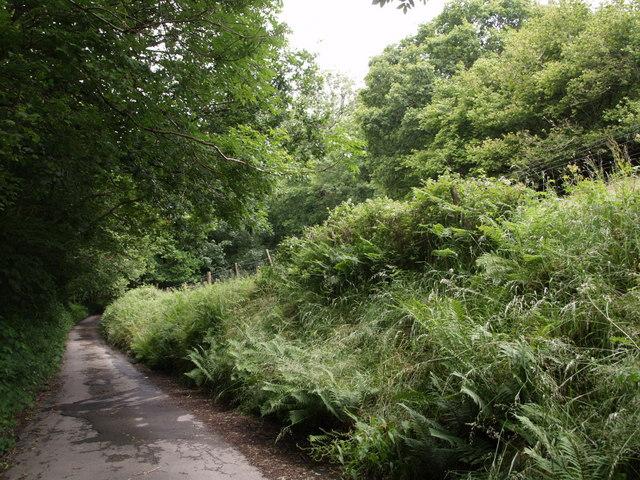 Lane to Woodridge Cross