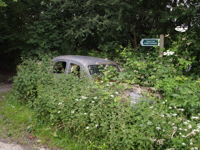 Overgrown Rover