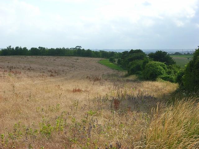 Farmland, Clarendon Park