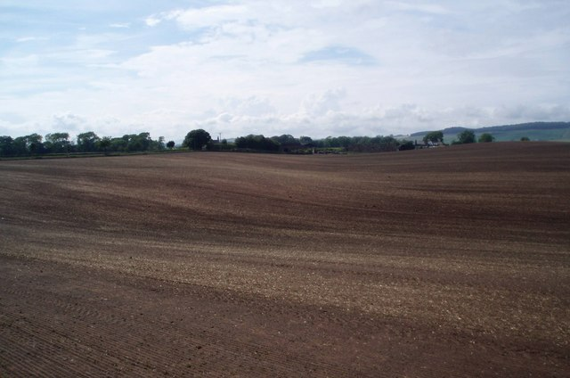Farmland, Mains of Ravensby
