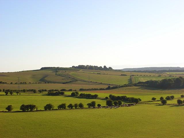 Pastures below Beacon Hill