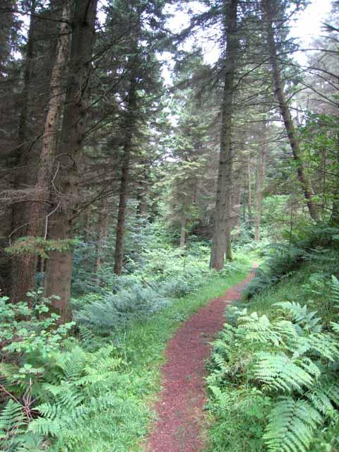 Lady Hunter Blair's Walk