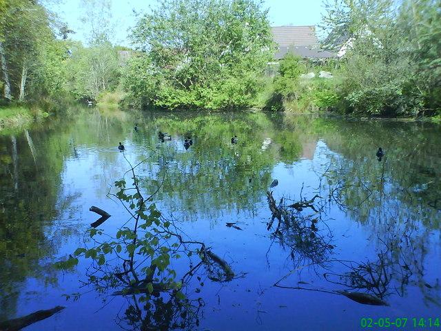 Old ornamental pond in Culduthel Woods
